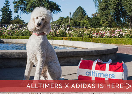 Alltimers x Adidas is now available!